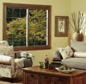 Swing & Clean Windows make cleaning Simple